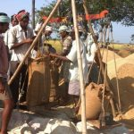 Odisha to open mandis from 1st Nov, targets higher  paddy procurement