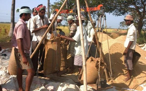 NCDC sanctions Rs 19444 crores for Kharif MSP operations amidst protest by farmers