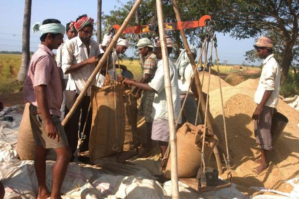 Odisha targets to procure 71 lakh tonnes of paddy in 2020-21 season