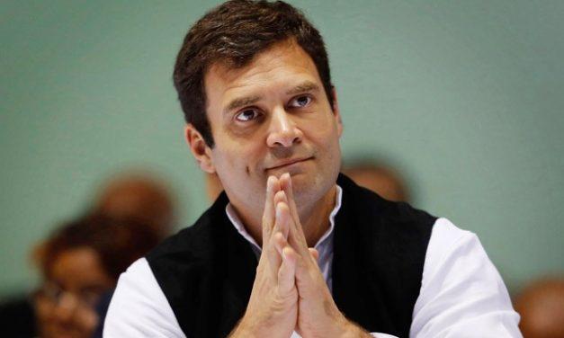 ED splecial director  headed panel to probe Gandhi Trust