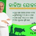 Keeping poll promises Naveen expands Kalia list by 32 lakh, to dish out Rs 3,234 crore