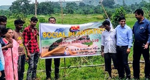 Hindalco launches plantations campaign in Hirakud