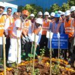 Tata Steel BSL plants 25,000 trees using Japanese technique Miyawaki