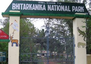 Bhitarkanika Reopens For Tourists from today