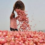 As onion price soars, govt opens buffer stock