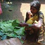 Van Dhan Yojana benefiting Odisha tribals
