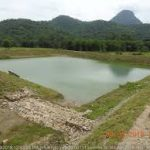 Odisha watershed program REWARD:  705 projects with $ 212 million to treat 5.26 lakh hectatres